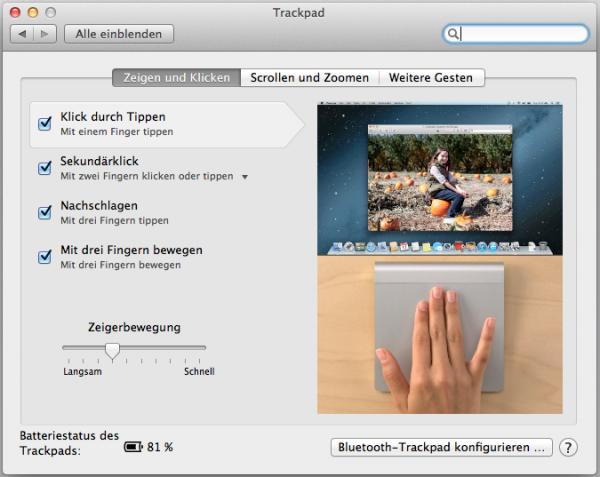 Bildschirmfoto 2013-01-16 um 16.28.58